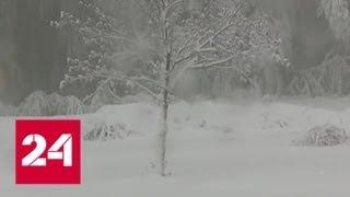 Европа мерзнет: на Корсике выпал снег - Россия 24