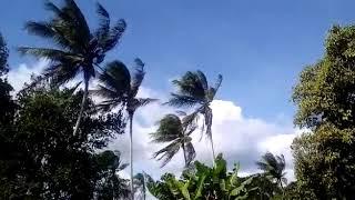 Fortes rajadas de vento na Bahia