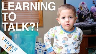 Learning To Talk? - Autism Language Development