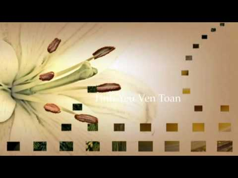 Tinh Yeu Ven Toan