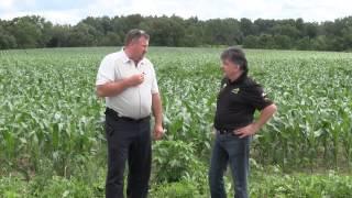 2015 Corn Belt Crop Tour Indiana State Video