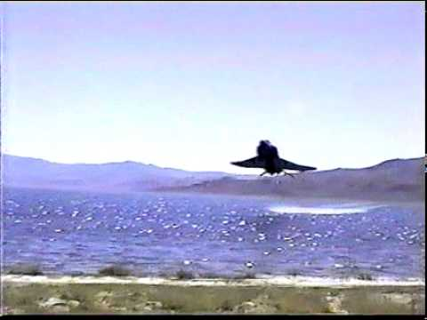 RF4 RightNow NOISE! RF-4 F4 EXTREMELY LOW FLYING Phantom F-4 NVANG Reno ANG