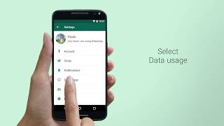 WhatsApp auto download media settings