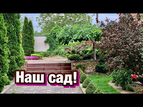 День рождения канала ПОД СИЛУ КАЖДОМУ! Наш сад!