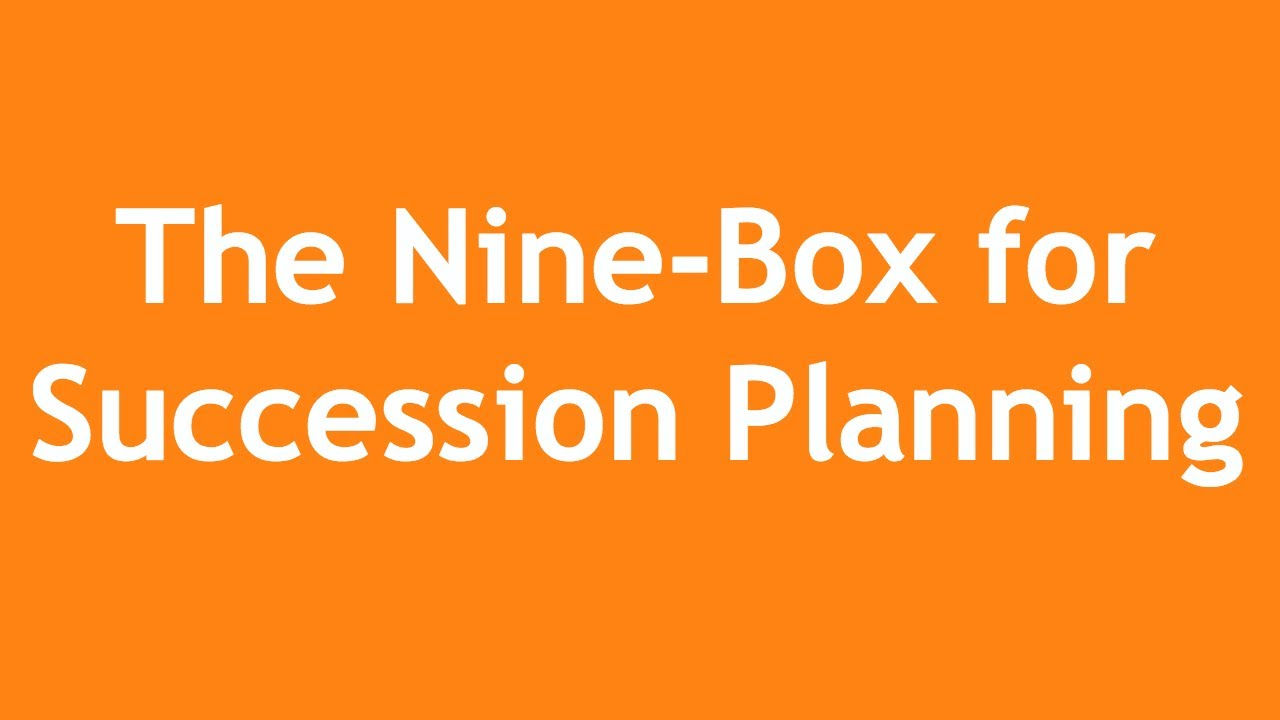 Using The Nine Box For Succession Planning A 3 Minute Crash Course