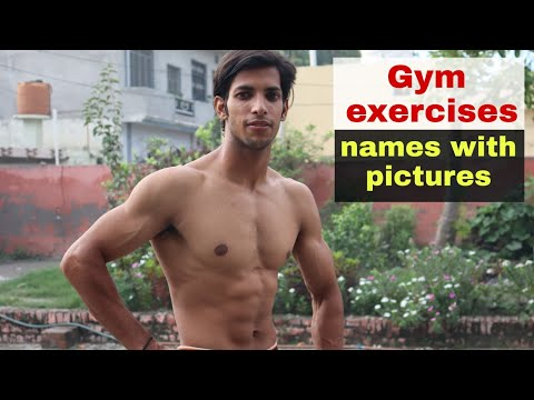 Gym Exercises Names With Pictures