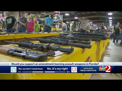 PM Tampa Bay with Ryan Gorman - Assault Weapons Ban Initiative Gets Closer To 2020 Ballot