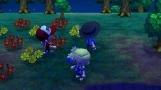 Animal Crossing: New Leaf Online Fun
