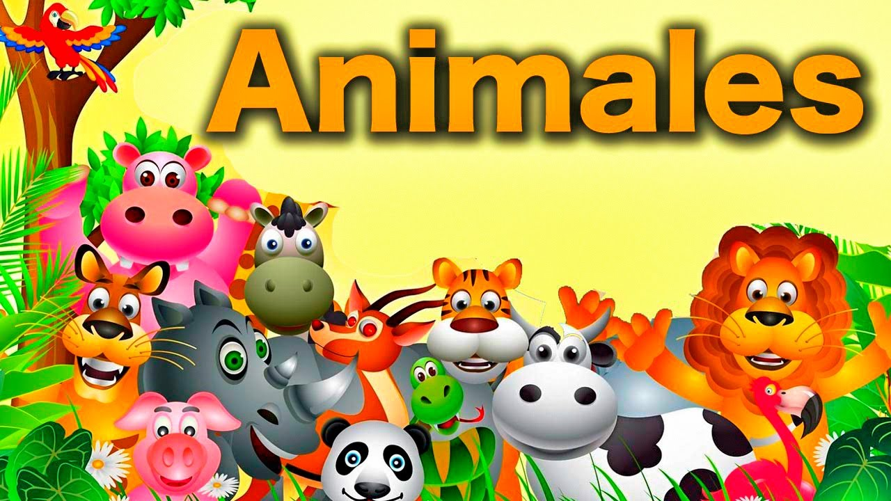 Canciones infantiles del zoo cantando a los animales videos educativos youtube - Fotos de animales infantiles ...