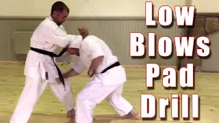 Low Blows Pad Drill