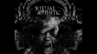 Ritual Aesthetic   Something To Know You By  Iszoloscope Remix  Video