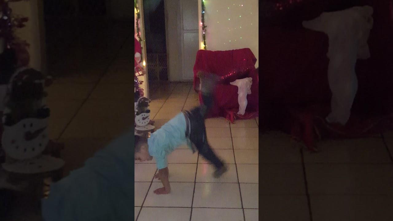 Cute Ass Boy Dancing 2017 Little Jose Flores 4yrs Christmas Eve Dancing