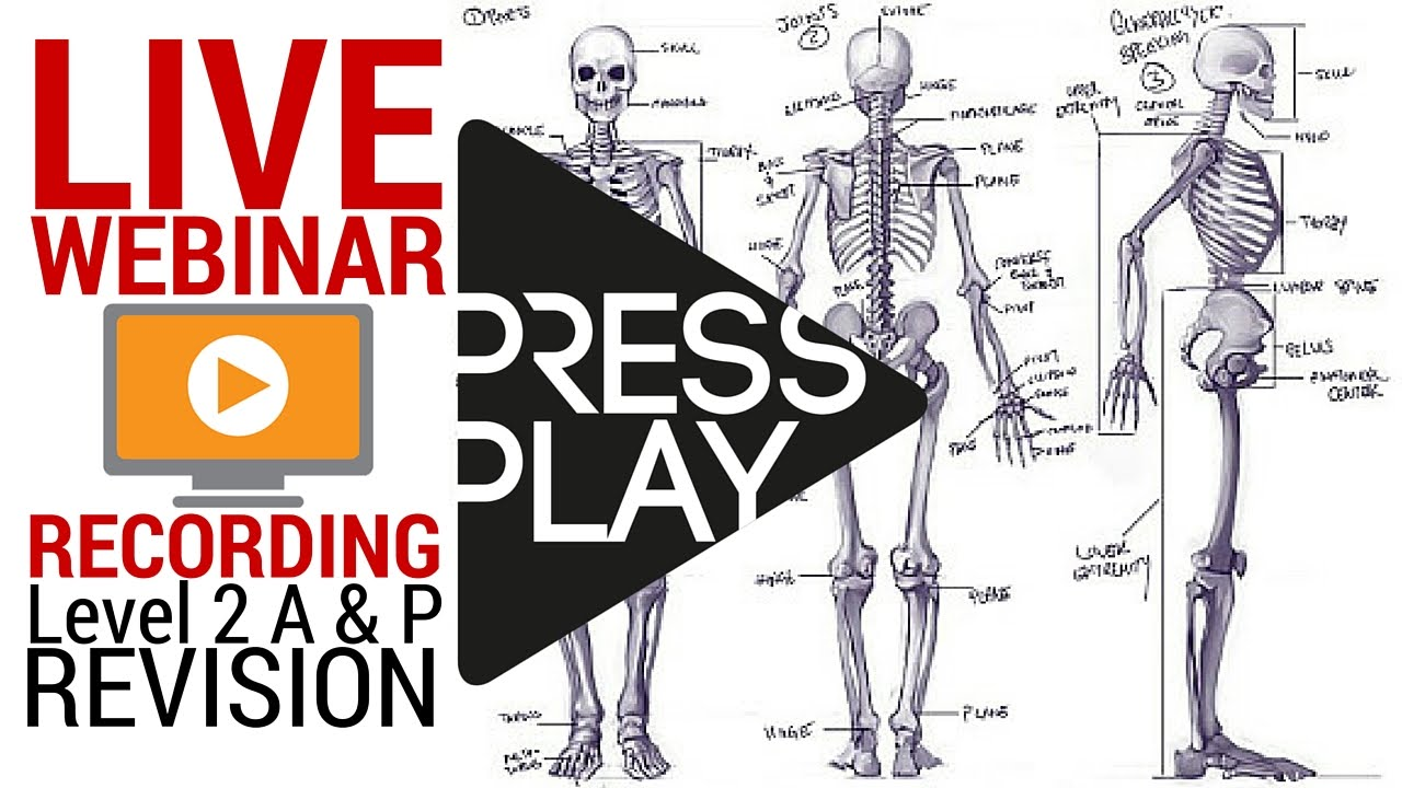 Level 2 A & P Revision: How to pass first time [Live Webinar Recording]