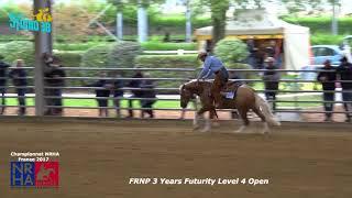 quarter horse, futurity ,reining,gb quarter horse,