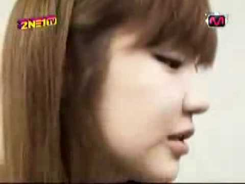 2ne1(park bom)-If i ain't got you_ Alicia Keys.