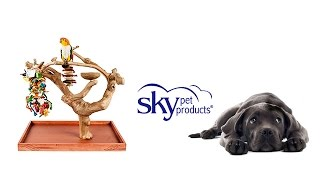 Bird Branches & Trees - Java Mini Tree - Sky Pet Products