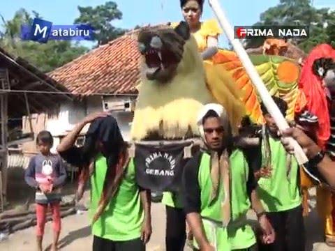 Langka Jodone - Burok Dangdut Prima Nada ( 10-03-2016 ) | Matabiru Pro