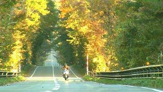 北山崎 八戸 北三陸 ツーリング SUZUKI GSX S1000 F 2018.11(オートバイと原風景とロールケーキと vol.017)
