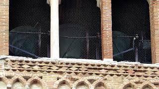 Campane di Verona, Vigilia di Pentecoste - S. Anastasia prima suonata