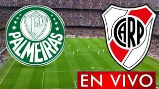 Donde ver Palmeiras vs. River Plate en vivo, partido de vuelta semifinal, Copa Libertadores 2021