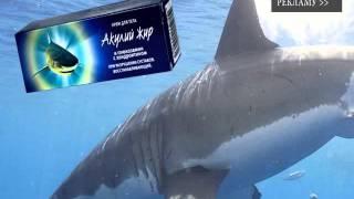 чем полезен акулий жир(, 2015-11-24T23:05:53.000Z)