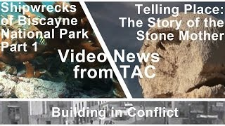 Video News from TAC, January 2014 Preview