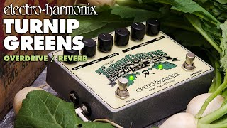 EHX TURNIP GREENS