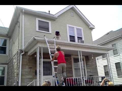 Dog Saved From Jumping Off Roof Youtube