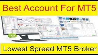 Low Spread Best Trading Account For MetaTrader 5 | Open a Trading MT5 Account Tani Forex in Urdu