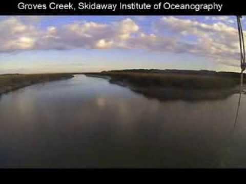 Groves Creek, Skidaway Island, December 2013