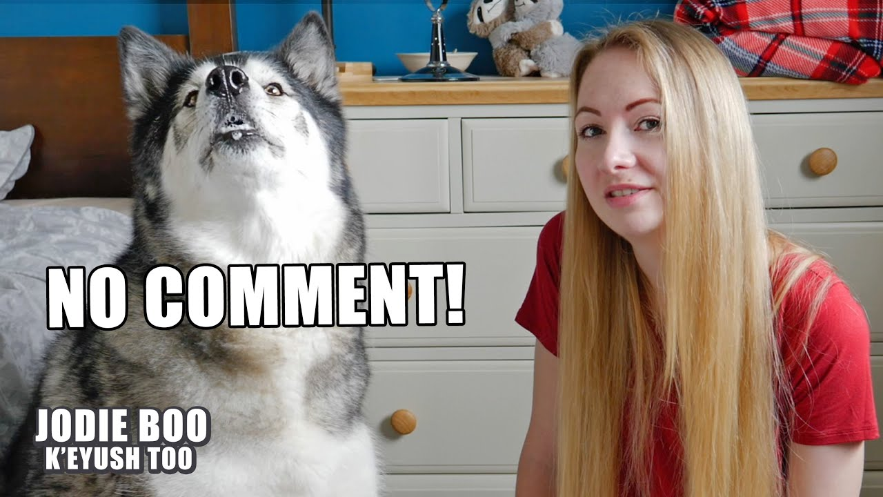 Answering Assumptions About My Husky And I!