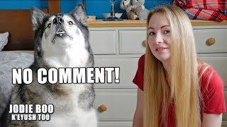 Answering Assumptions About My Husky And Me!