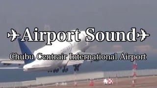 Airport Sounds : Japan 【HQ Audio】空港アナウンス チャイム 音 《環境音》ファイナルコール 空港警察アナウンス 作業用BGM セントレア