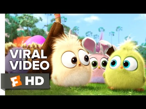 The Angry Birds Movie VIRAL VIDEO -...