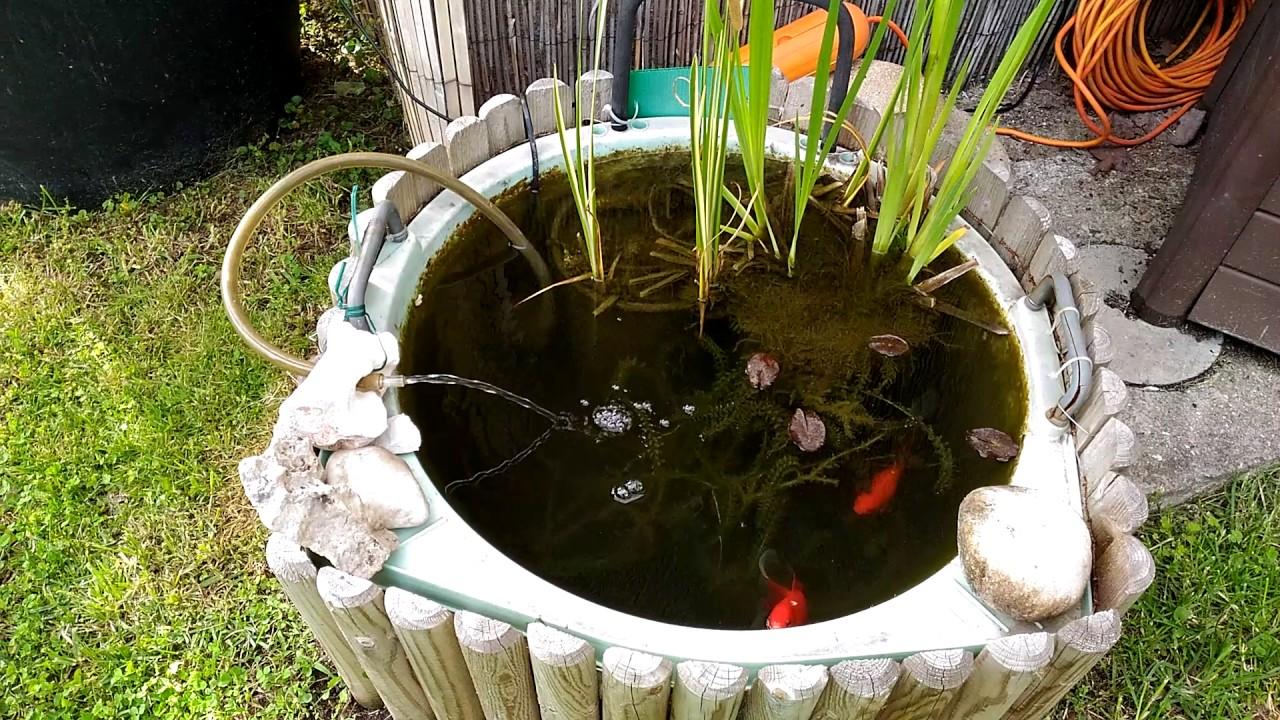 Laghetti da giardino garden ponds youtube for Pesci da laghetto mangia zanzare