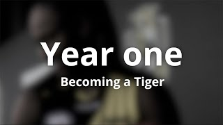 Year One: Becoming a Tiger