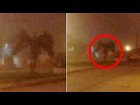 Mysterious GIANT Winged Creature Caught on Camera