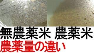 無農薬のお米と普通栽培のお米、どれくらい農薬量は違うのか thumbnail