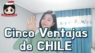 #30. Cinco ventajas de vivir en CHILE [Lo cuenta una Coreana]