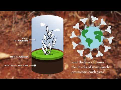Soil Organic Carbon – the treasure beneath our feet