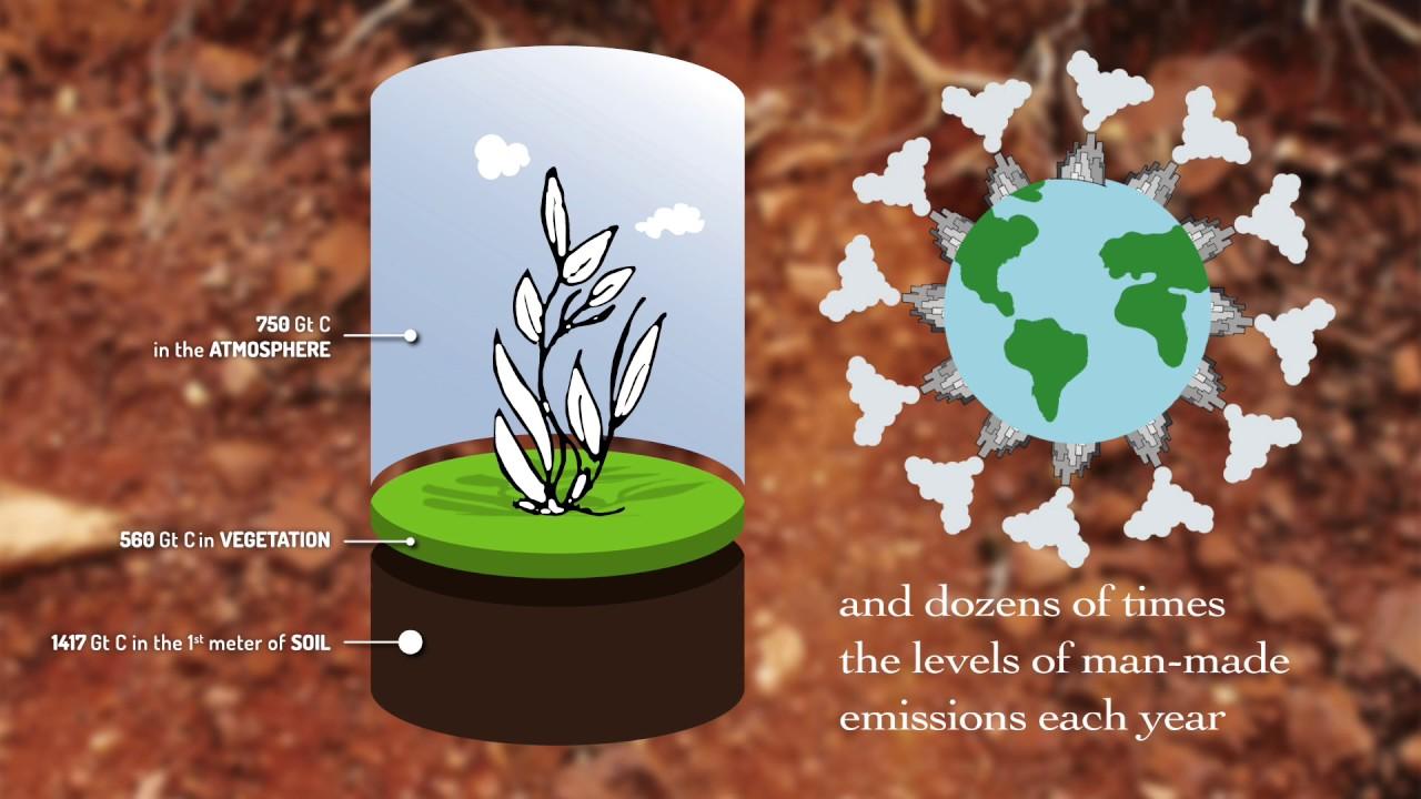 (March 2017) Soil Organic Carbon – the treasure beneath our feet