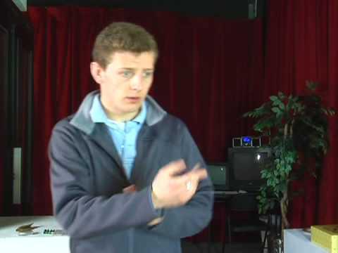 Basic Sign Language Phrases : Sign Language Phrases: Thank You