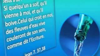 Chante Alleluia au Seigneur(JEM)