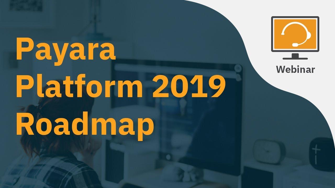 Payara Platform Roadmap for 2019