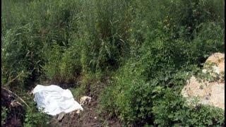 В полях найден труп молодой женщины.MestoproTV