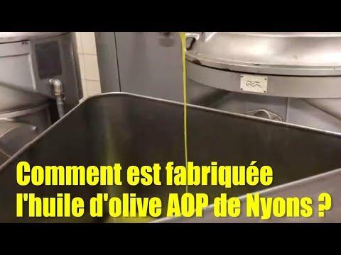 Comment est fabriquée l'huile d'olive AOP de Nyons ?