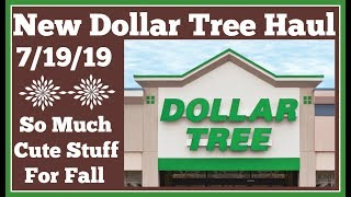 New Dollar Tree Haul 🤑 7/19/19 New cute Fall Stuff is coming out