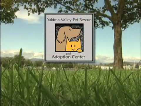 Yakima Valley Pet Rescue Promo 1