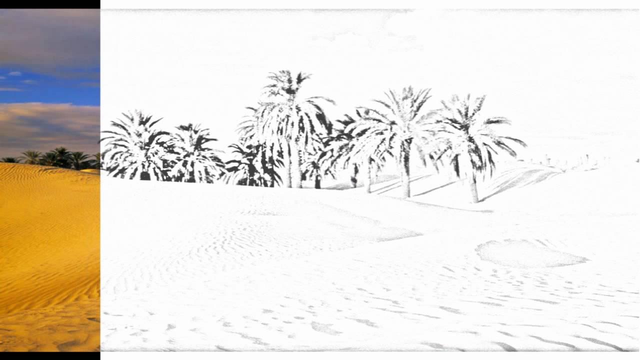 desert oasis drawing - photo #11