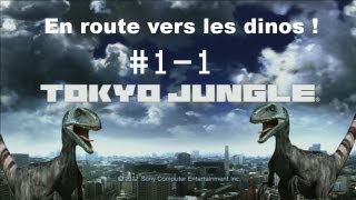 Tokyo Jungle. En route vers les dinos #1-1 le golden retriever